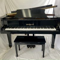 A Hallet Davis & Co grand piano suited for a beginner to intermediate player. The product to performance ratio is outstanding.