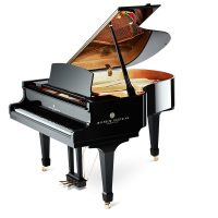 The Wilhelm Grotrian WGS-165 is your musical companion and biggest critic. Grand pianos of this caliber are worth years of practice.