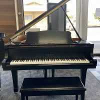 The Yamaha C1 is special because of its condition and PianoDisc addition.